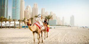 Стажировки в ОАЭ: горящее предложение на летний сезон!