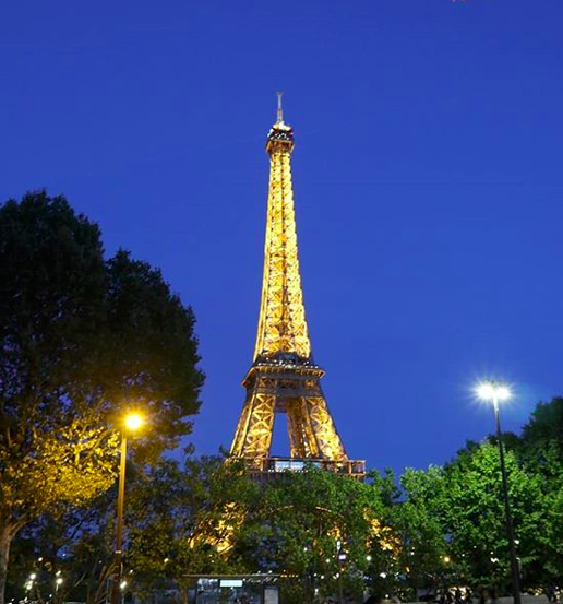 волонтерский проект во Франции